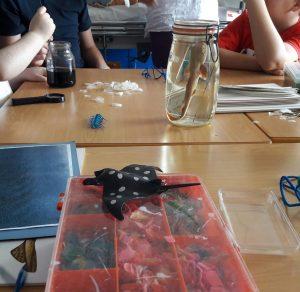 Um aluno mexe com um pincel o corante alimentar misturado com água dentro de um frasco. Em cima da mesa encontra-se o frasco com o tubarão conservado em clorofórmio.