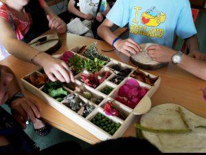 Várias mãos de alunos tiram elementos da natureza de uma caixa.