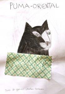 Desenho a carvão do puma-oriental e colagens verdes
