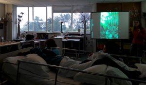 Os alunos observam uma imagem do lobo projetada no quadro interativo.