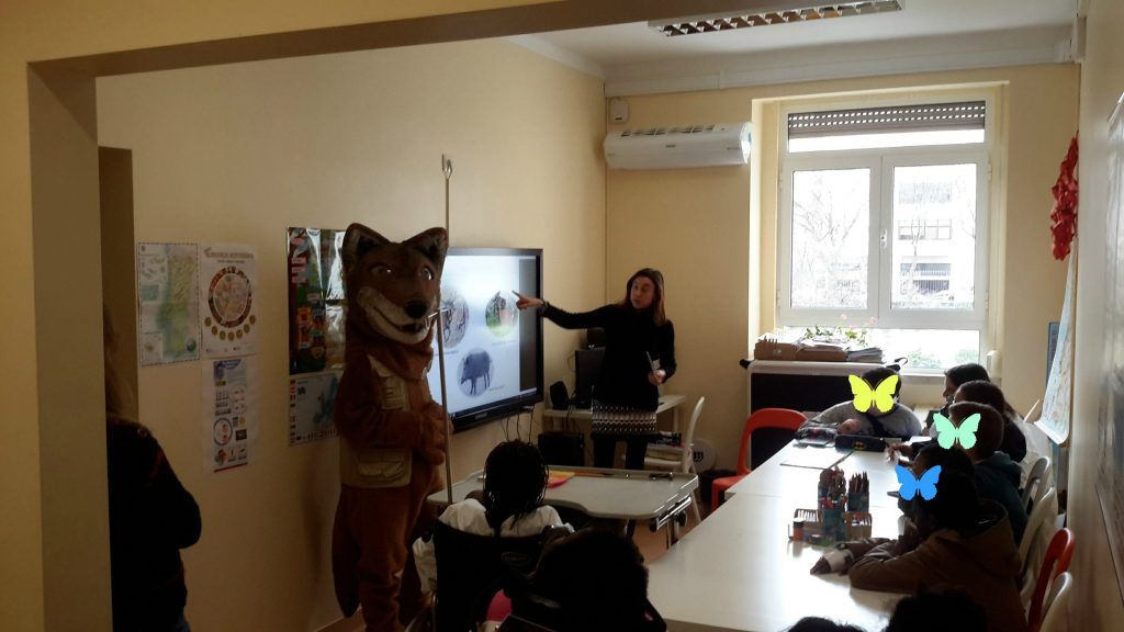 A Drª Isabel Ambrósio e a mascote Signatus falam sobre os lobos