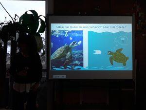 No quadro interativo encontra-se um diapositivo com tartarugas marinhas a alimentarem-se de objetos em plástico que confudem com os alimentos que fazem parte da sua alimentação.