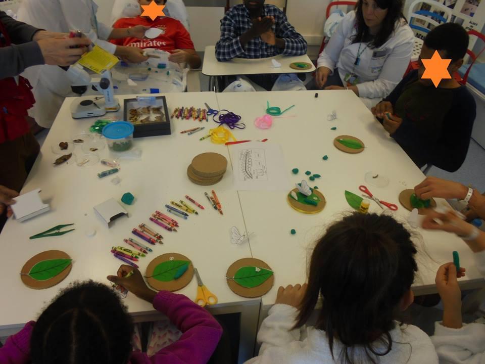 Alunos pintam as suas borboletas
