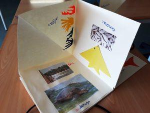 Um livro de autor aberto com colagens de imagens de peixes, prais, algas e origamis de peixe.