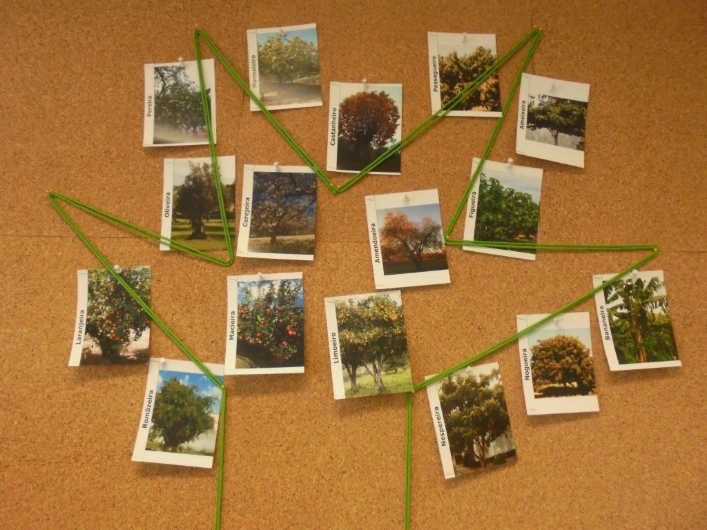 Placard com imagens de árvores