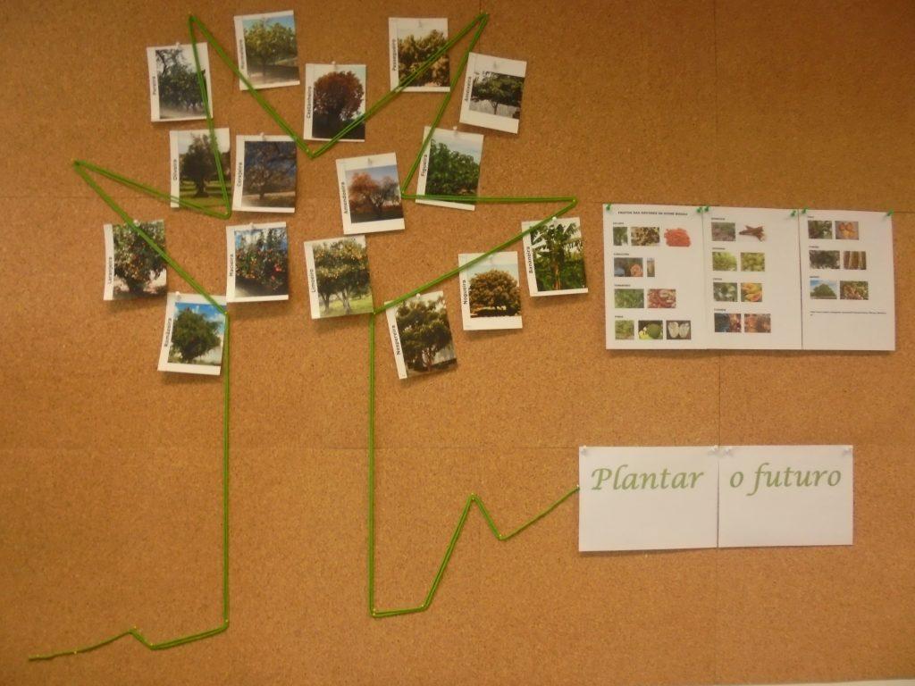 Placard com imagens de árvores e frase Plantar o futuro