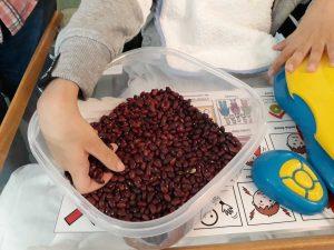 A mão de um aluno a sentir a textura do feijão encarnado.