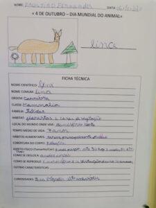 Trabalho de aluno com desenho de animal e dados sobre o animal