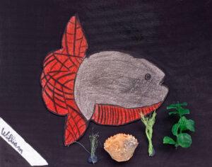 Trabalho final: o peixe-lua feito em relevo feito em cartolina e colado sobre um fundo preto e rodeado com fios de pesca, um objeto de plástico que imita folhas e a carapaça de um pequeno caranguejo.