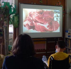 Os alunos observam e comentam uma pintura de Rosa Carvalho.