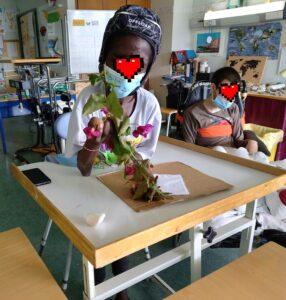 Os alunos escolhem as flores e folhas que querem para o seu trabalho.