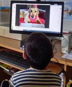 Um aluno fala para a Pepper que olha para ele através do monitor de um computador.
